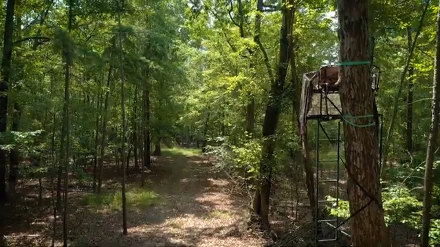 Hunting land for sale with deer blind