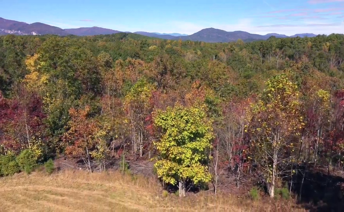 mountain views conservation lot for sale