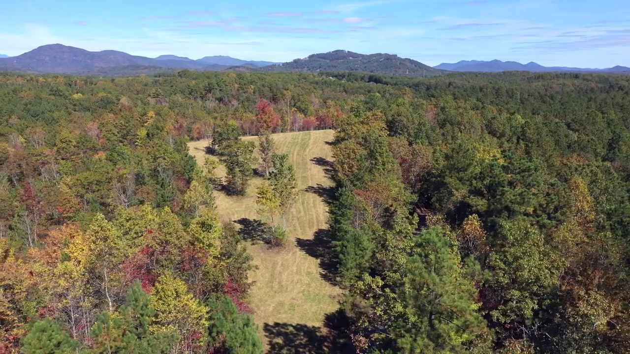 Conservation lot for sale with mountain views Polk County NC
