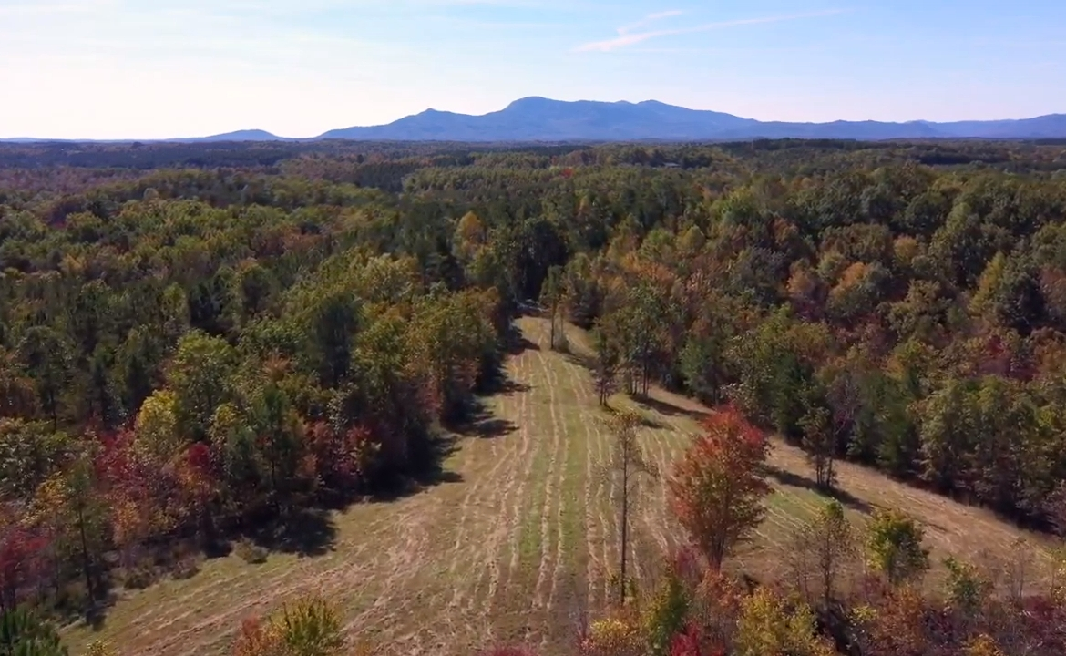 Conservation lot for sale in Polk County NC near Asheville, Lake Lure